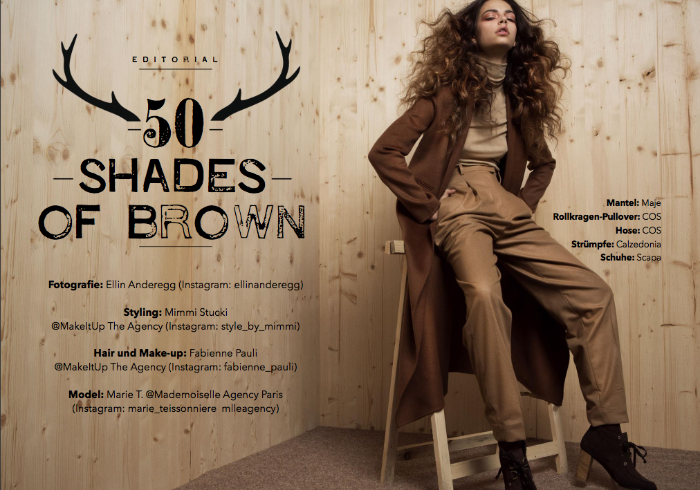 Hair, Nail, Make-up und Fashion styling portfolio / mimmi-sch--ldstr--m-stucki - styling-50-shades-of-brown--ID385-1.png?v=1586159211