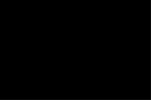Kunden Logo adidas-ID250-0.png?v=1569919081